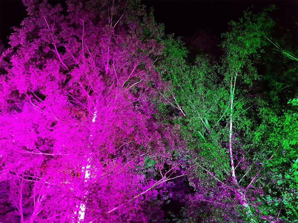 Das Festgelände erstrahlte in stimmungsvoller Beleuchtung.